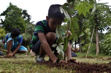 प्रदेश में 15 जुलाई से चलेगा पौधा रोपण अभियान