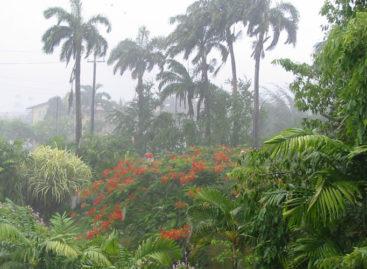 प्रदेश के 12 जिलों में सामान्य से अधिक और 19 जिलों में सामान्य वर्षा दर्ज