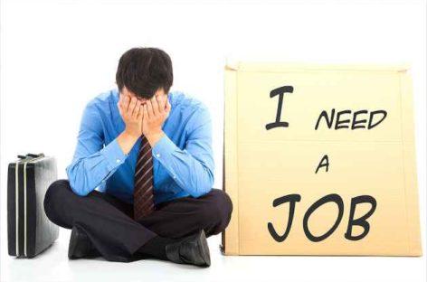 2013 के बाद नौकरियों की संख्या घटी, रिपोर्ट में हुआ खुलासा